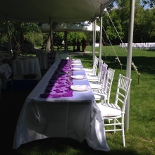 Purple Mesh Table Runner used on Head Table with White Table Linen